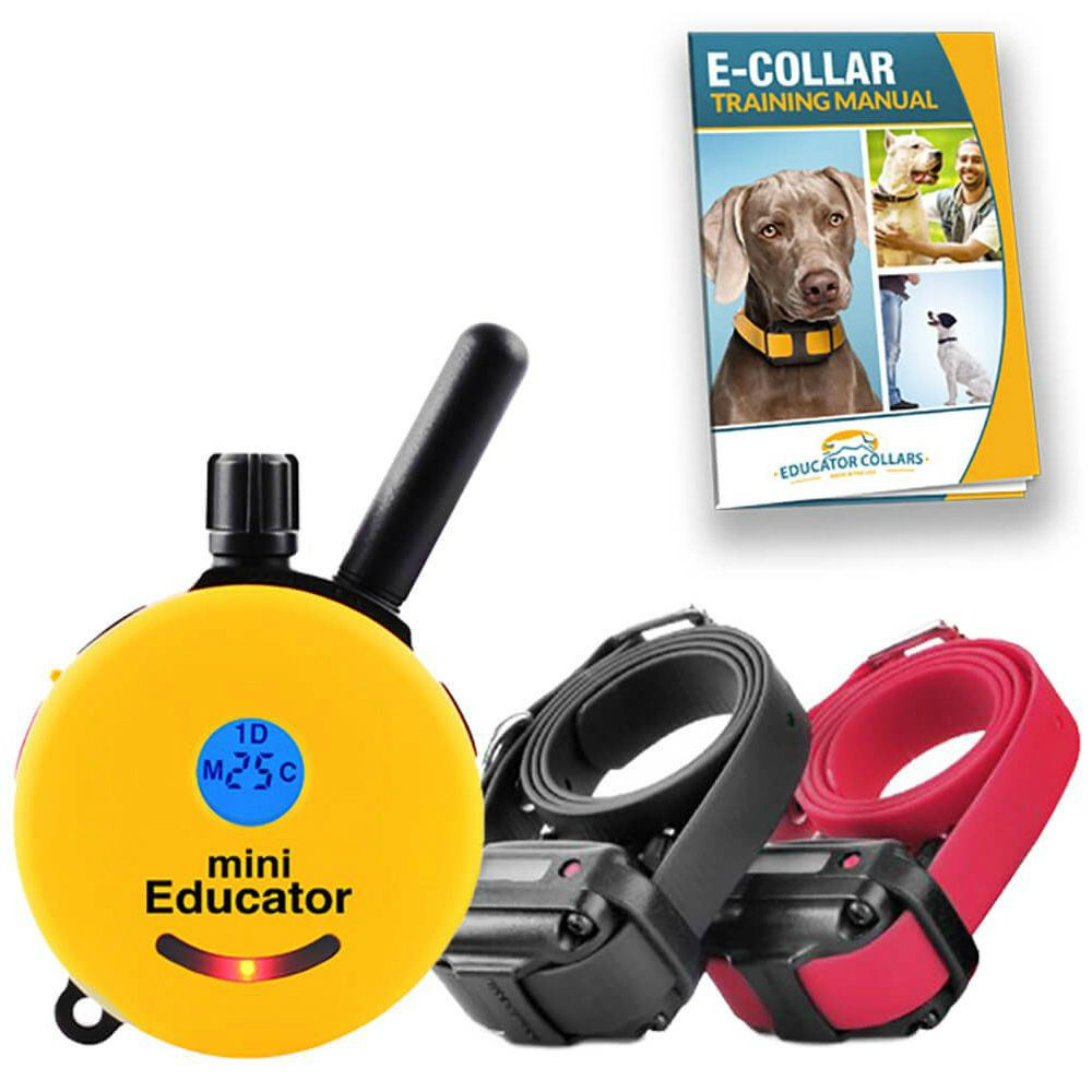 The Pro Educator From E Collar Technologies Dog Training Collar Dog Training Training Collar